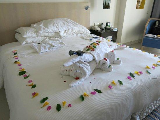 ฮิลตันมาซาอลัมนูเบียนรีสอร์ท: Room