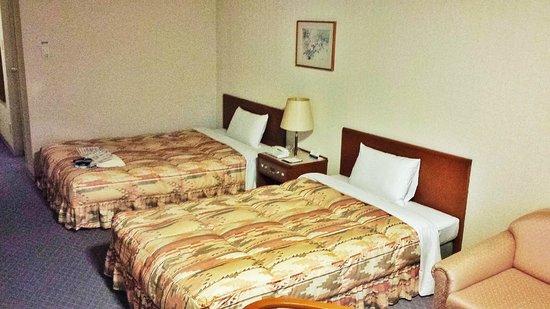 โรงแรมชินชู มัตซุชิโร่ รอยัล: Room 806