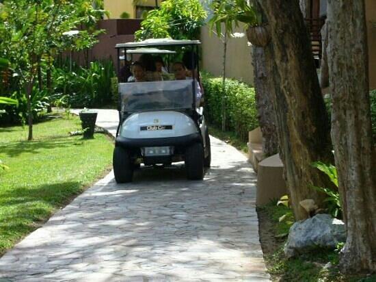 โรงแรมปารดี: resort service