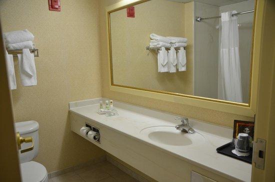 Country Inn & Suites by Radisson, Newark Airport, NJ: sdb
