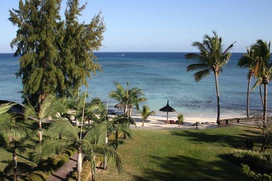 เลเมอริเดียนเมาริส: View From my room in morning