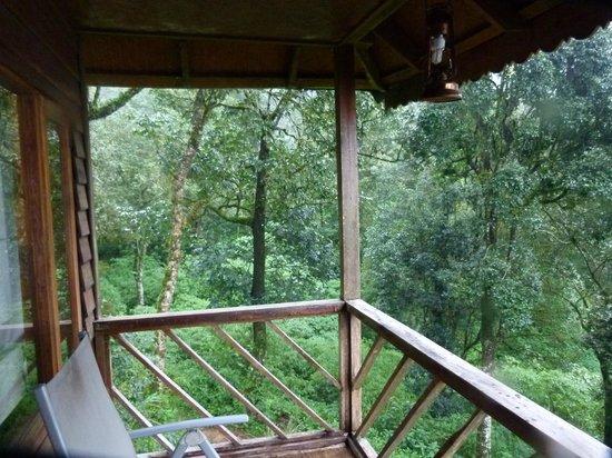 Nature Zone Resort: Tree House Balcony