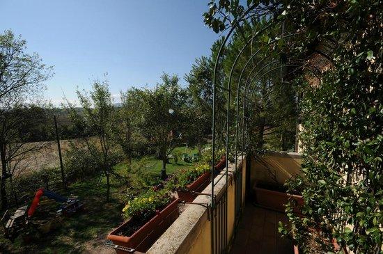 Bed & Breakfast San Marco: vista sul giardino