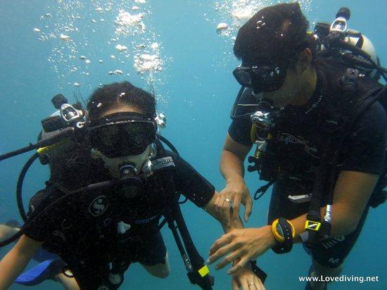 เลิฟ ไดวิ่ง ภูเก็ต: Love Diving Phuket