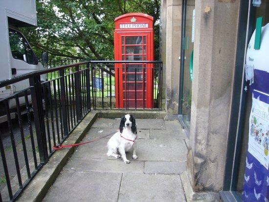 Smatt's Duo Cafe Bar & Bistro: red telephone box