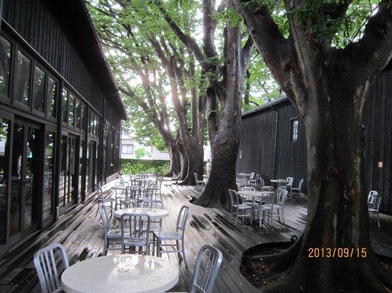 Sankyo Soko Storehouse: オープンカフェ