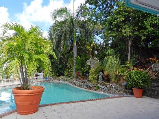 Flamboyan on the Bay Resort & Villas: Upper pool deck