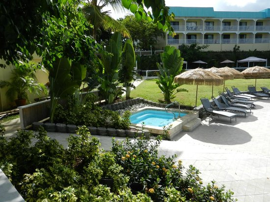 Flamboyan on the Bay Resort & Villas: Lower pool jacuzzi
