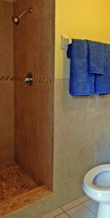 Flamboyan on the Bay Resort & Villas: Studio shower and bathroom, fully redone