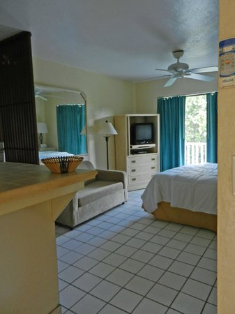 Flamboyan on the Bay Resort & Villas: Studio suite