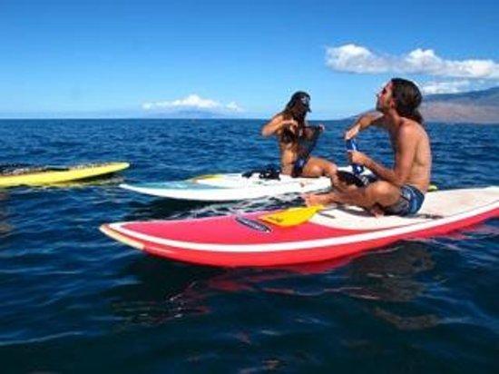 Makena Paddle Tours: Enjoying the Maui Coastline