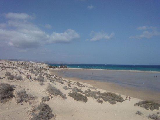 Occidental Jandia Playa: la spiaggia laguna