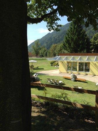 Centro Pineta Family Hotel & Wellness: scorcio del giardino