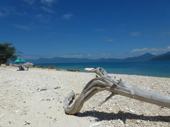 Fitzroy Island, Australia: Nudey Beach