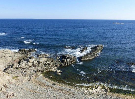 Selena Beach Hotel: море  недалеко от отеля