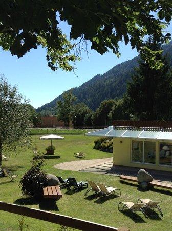 Centro Pineta Family Hotel & Wellness: scorcio giardino