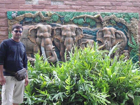 กาเซโบ รีสอร์ต พัทยา: Garden