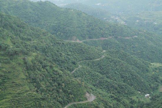 Birds View Kasauli: Kasauli Valley-2