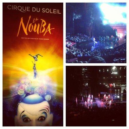 La Nouba - Cirque du Soleil: show