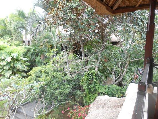โรงแรมบาหลี อากุง วิลเลจ: le jardin vu de la chambre
