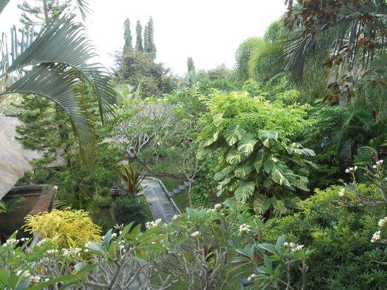โรงแรมบาหลี อากุง วิลเลจ: le jardin