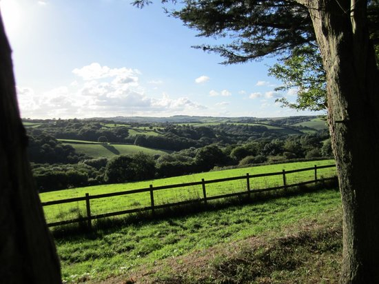 Country Ways Holiday Cottages: Views across the grounds