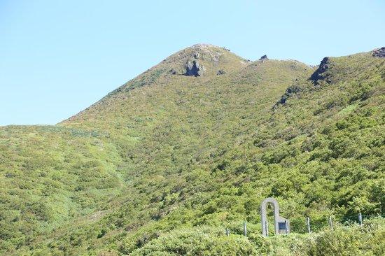 Mt. Iwaki: 山頂方向