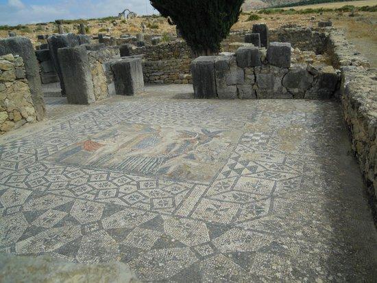 โวลูบิลิส: Mosaic
