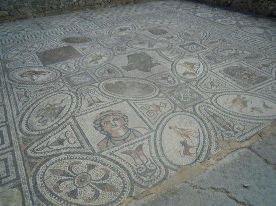 โวลูบิลิส: Mosaic des tvx de Hércule