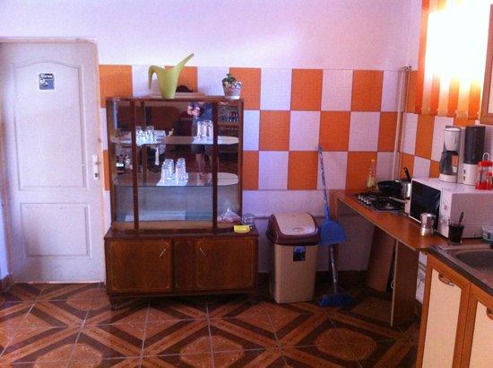 Casa Petru: Communal room / kitchen