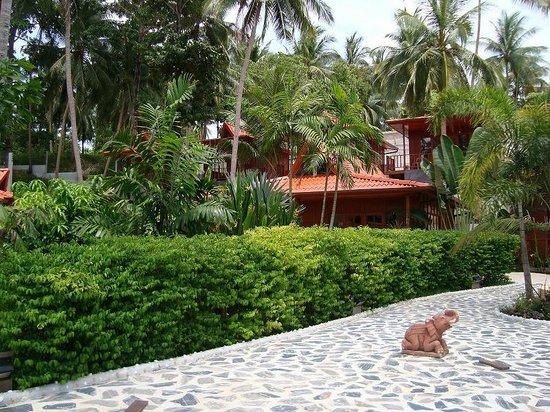 Cyana Beach Resort: รีสอร์ท