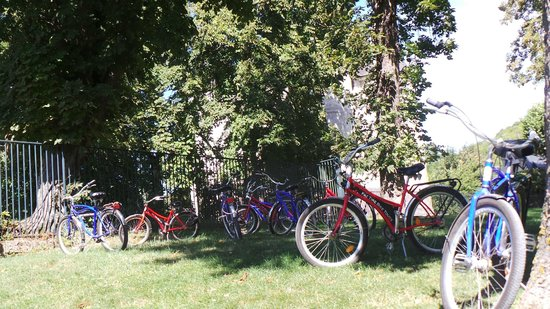 Fat Tire Tours Paris: The bikes patiently waiting while we ate our picnic lunch