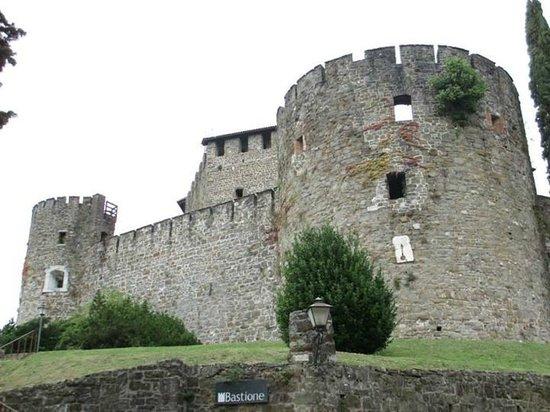Castello di Gorizia: Il Castello