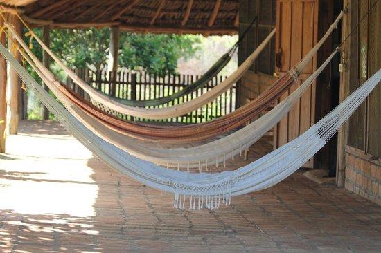 Caiman House Field Station: hammocks outside room