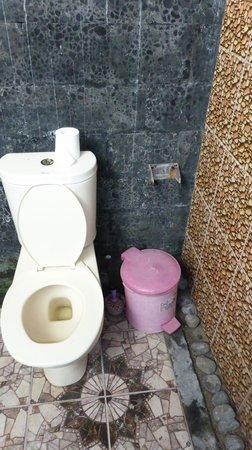 Pondok Windy: Toilette / Zustand Badezimmer