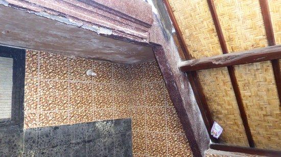 Pondok Windy: allg. Zustand Badezimmer / Decke