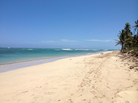 Zoetry Agua Punta Cana: White sand