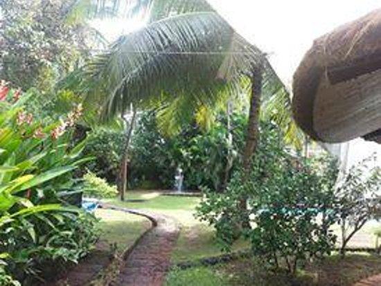 Presa di Goa Country House : Garden