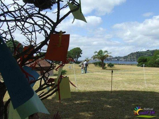 Pestana Bahia Praia: Àrvore das boas vibrações