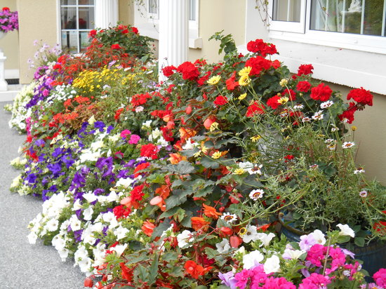 Bay View House Bed & Breakfast: floral display