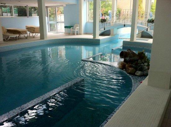 Hotel Terme Villa Piave : La piscina