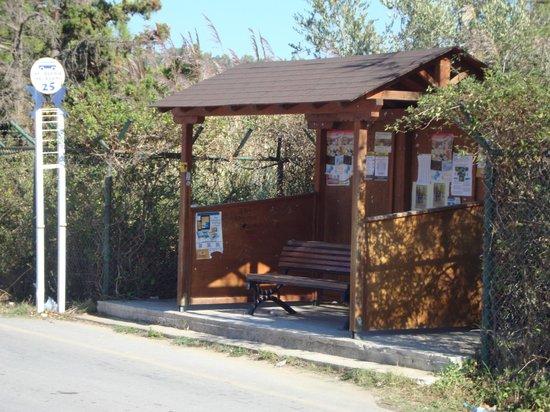 Panorama Hotel: Bus Stop 24