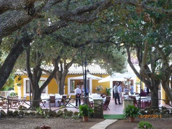 Hotel Rural Sant Ignasi: Terraza comedor