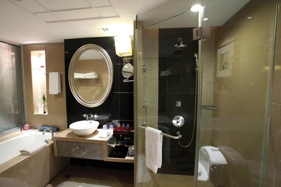 Vision Hotel: Bathroom