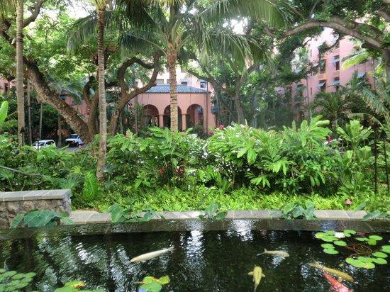 Sheraton Waikiki: 隣のロイヤルハワイアンホテル正面