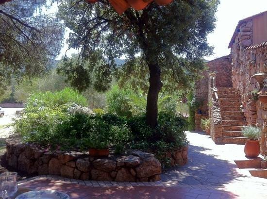 Pozzo di Mastri: côté restaurant