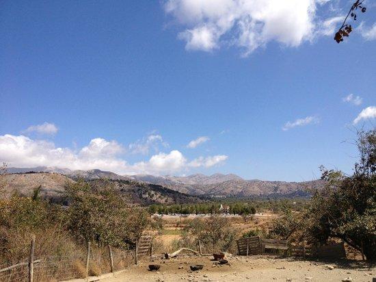 In der Lassithi Hochebene - Bild von Lassithi Plateau ...