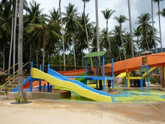 Coco Splash Adventure & WaterPark: Горки
