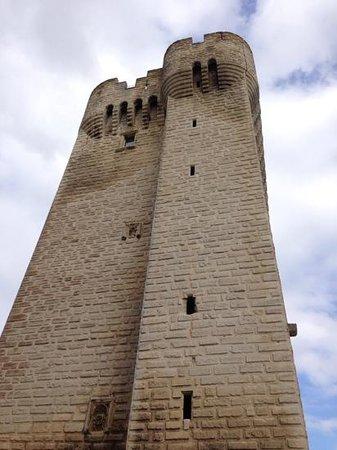 Abbaye de Montmajour : tour