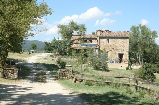 Podere Timignano : First impression while arriving